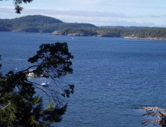View of Halfmoon Bay from Cottage
